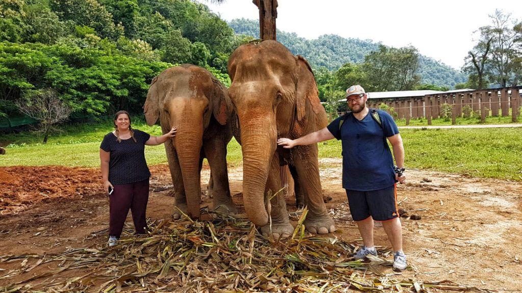 Qué hacer en Chiang Mai: Elephant Nature Park