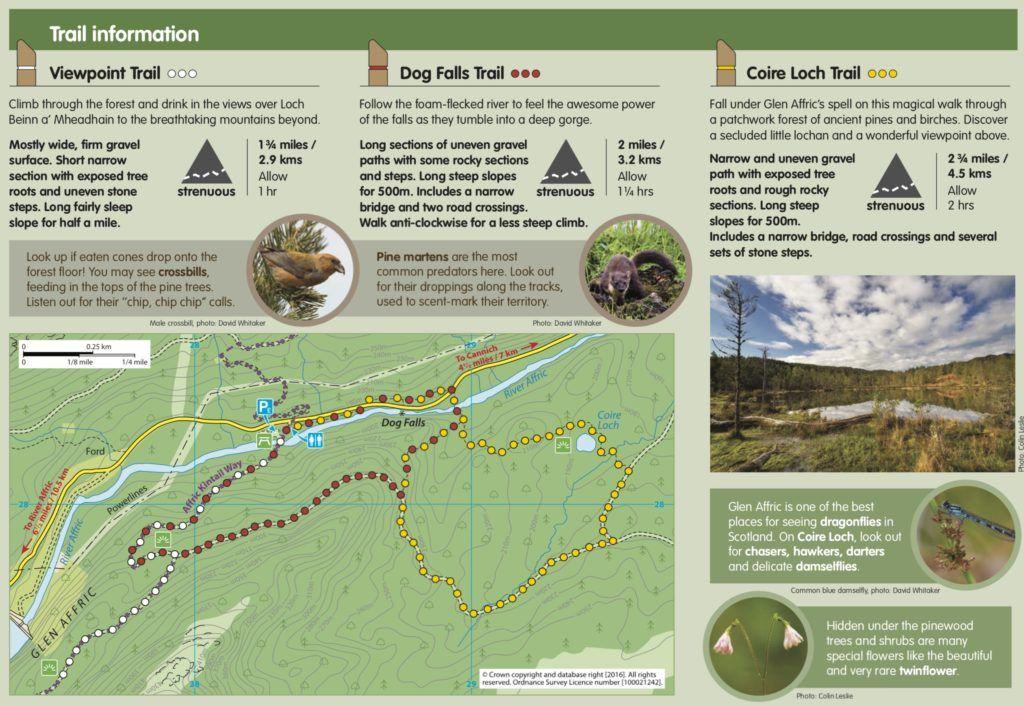 Un día en el Lago Ness: Trails en las Dog Falls
