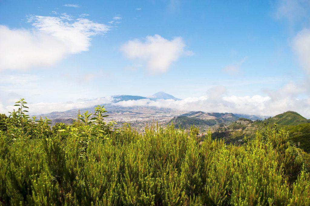 Tenerife en una semana: Sierra de Anaga