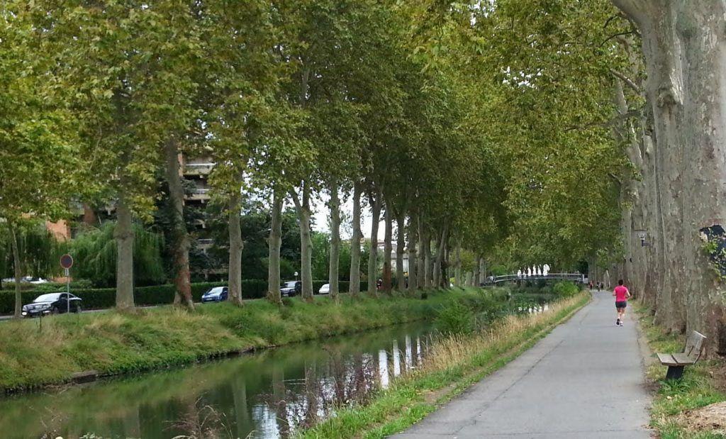 Qué ver en Toulouse: Canal du Midi