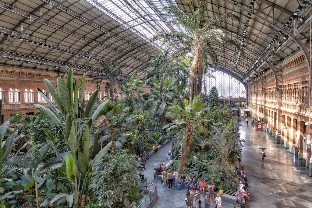 Qué ver en Madrid: Estación de Atocha