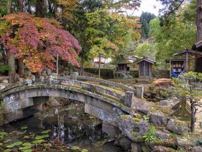 ¿Cuál es la mejor época para viajar a Japón? Clima, festivales y eventos