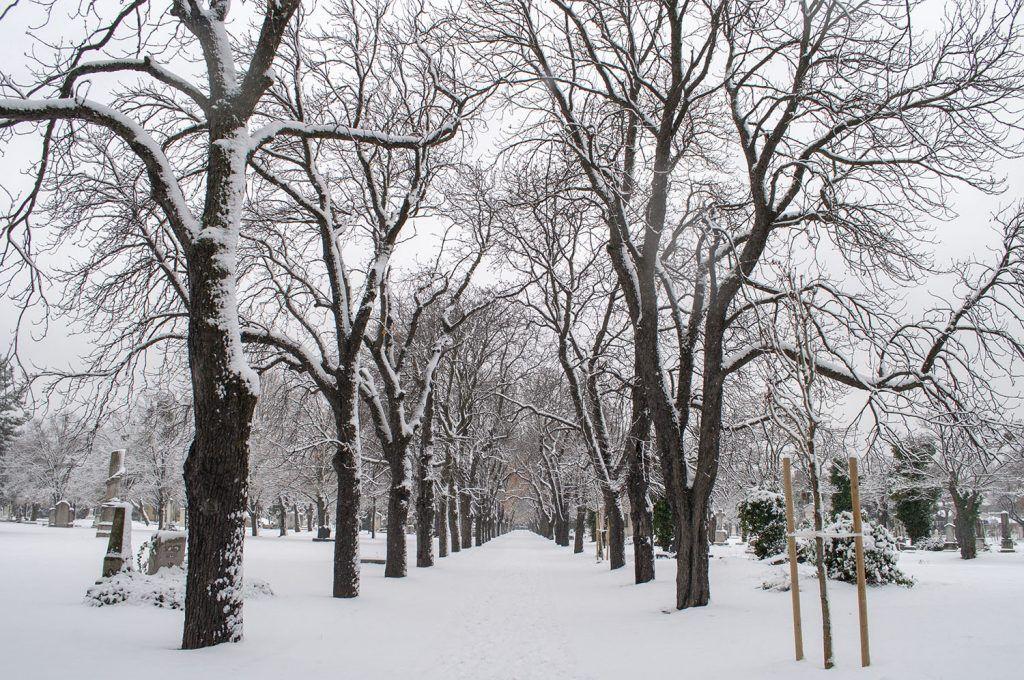 Qué ver en Budapest: Cementerio Fiume o Kerepeti
