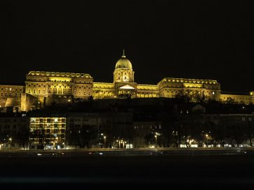 Crucero por el Danubio en Budapest: qué empresa elegir, precios e info útil