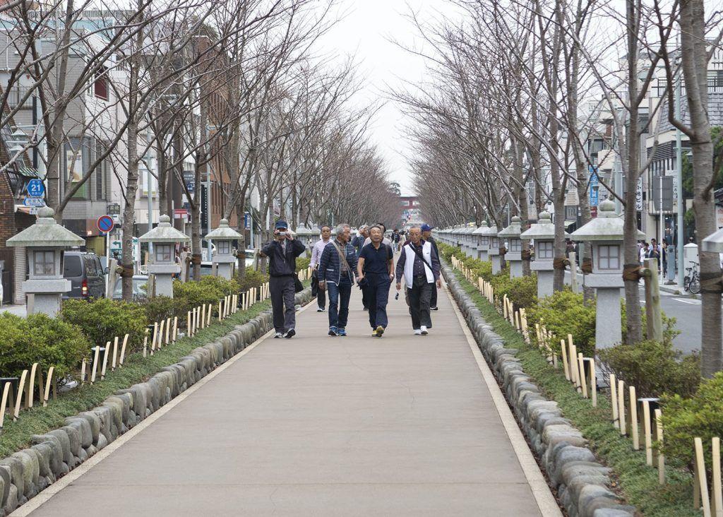 Qué ver en Kamakura: Camino Wakamiyaoji