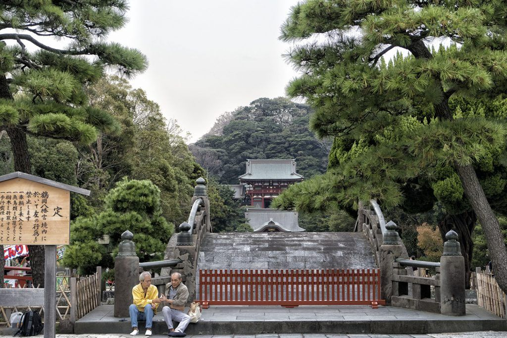 Qué ver en Kamakura: Templo Tsurugaoka Hachiman-gū
