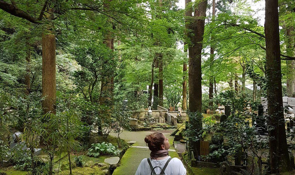 Cómo ir de Tokio a Kamakura