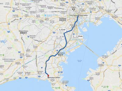 Cómo ir de Tokio a Kamakura [OPCIONES + PRECIOS + DURACIÓN]