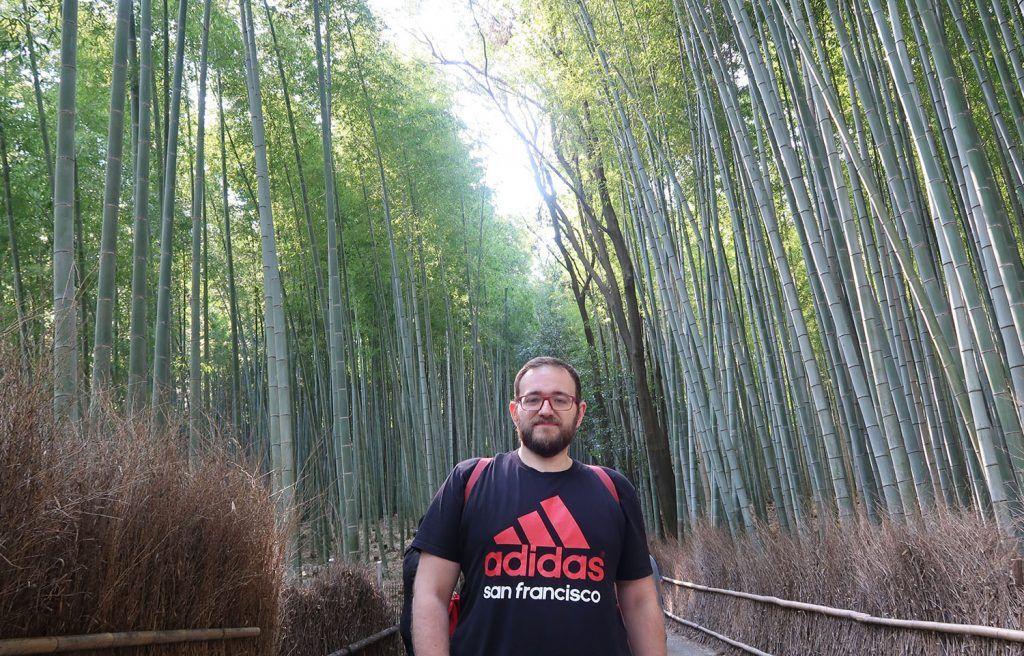Qué ver en Kioto: bosque de bambú de Arashiyama