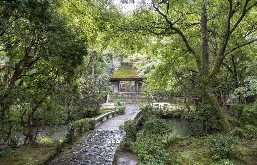 Qué ver en Kioto: Hōnen-in