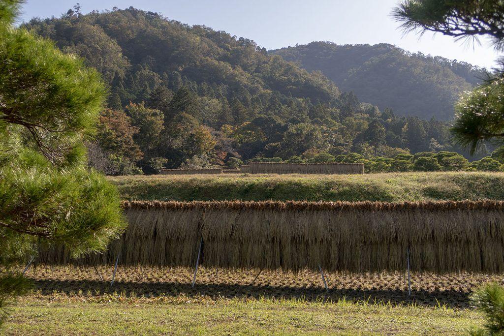 Qué ver en Kioto: Shugakuin Imperial Villa