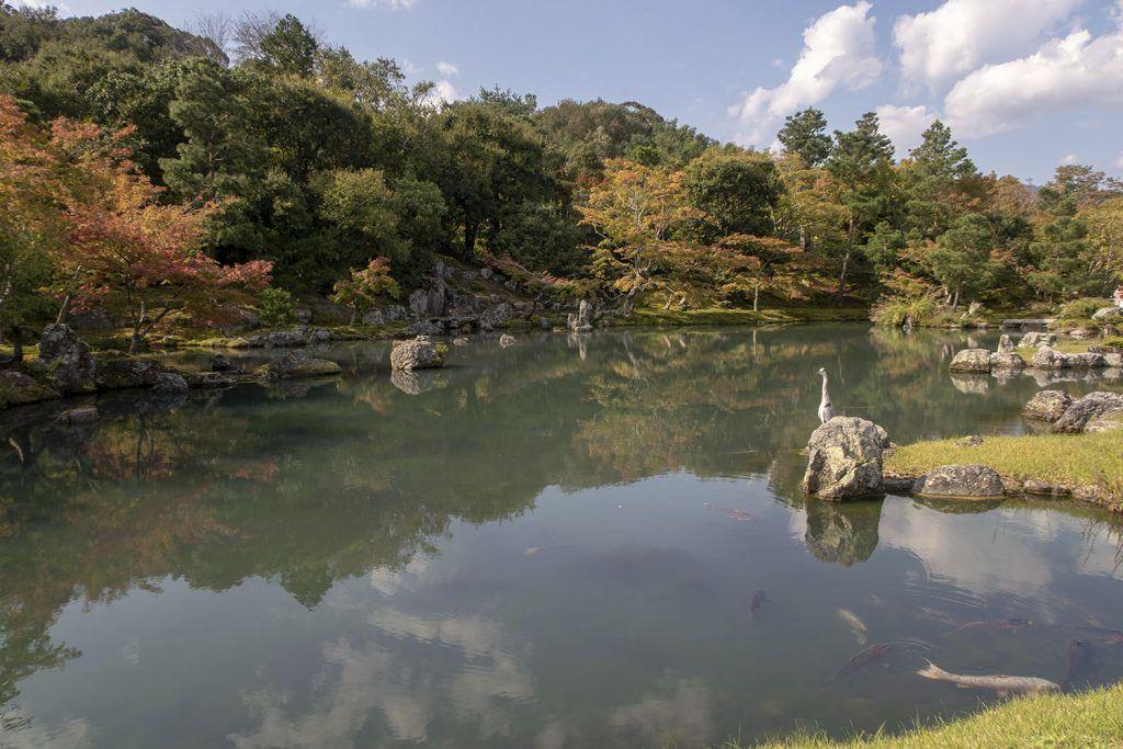 Qué ver en Kioto: Tenryu-ji