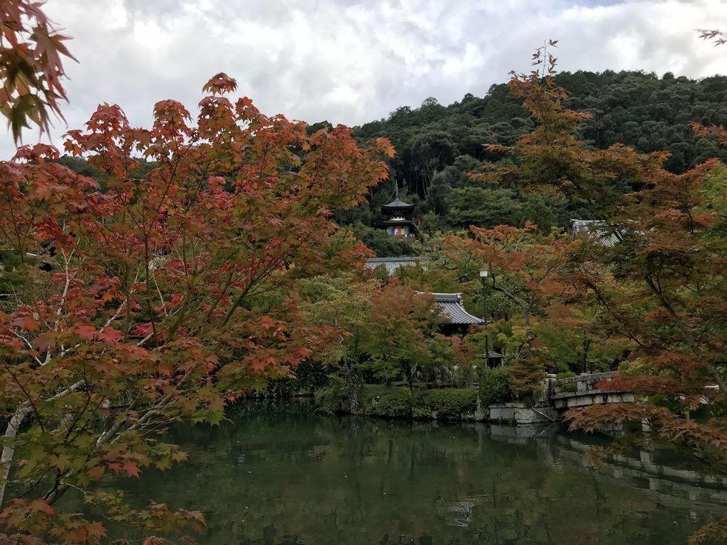 Qué ver en Kioto: Eikan-do - imprescindibles en kioto