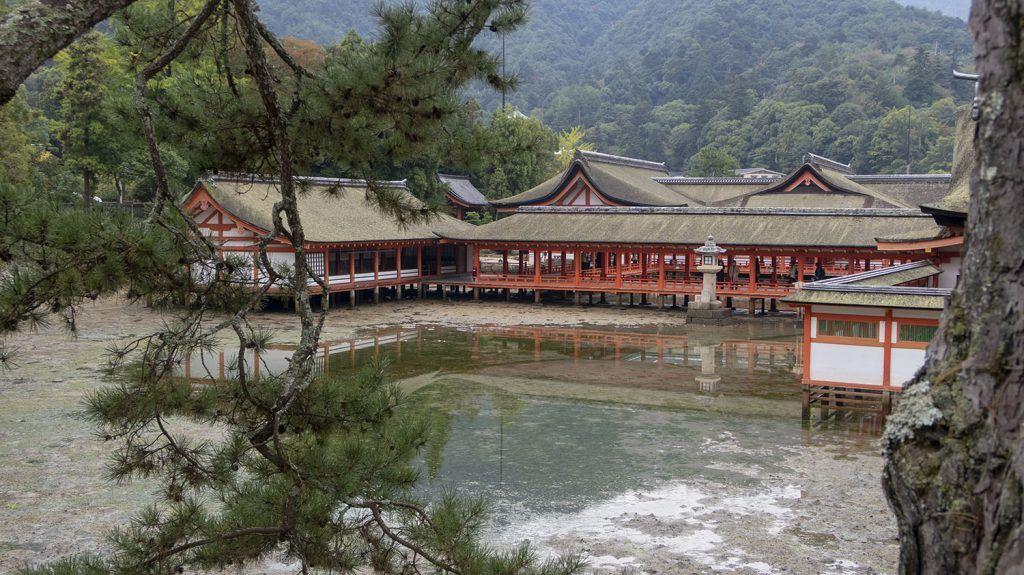 Qué ver en Miyajima: Santuario de Itsukushima