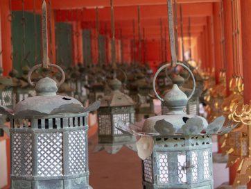 Qué ver en Nara en un día [GUÍA + ITINERARIO + VÍDEO]