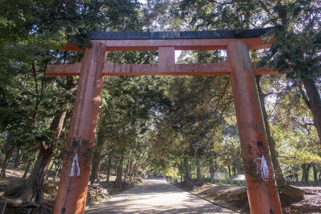 Qué ver en Nara: Parque de Nara