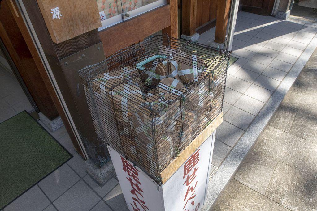 Qué ver en Nara: comida para ciervos