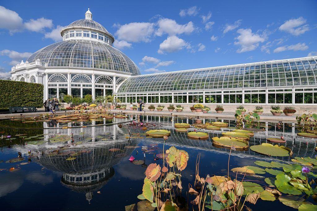 Qué ver y hacer en el Bronx: Jardín Botánico de Nueva York