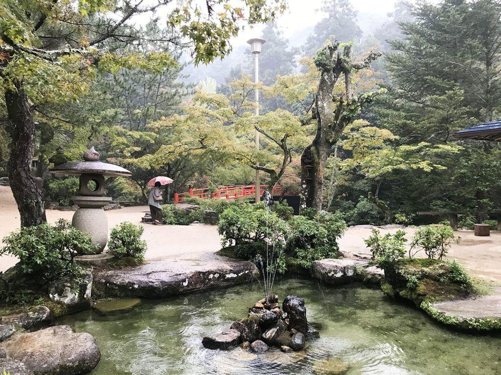 Jardines del Iwaso