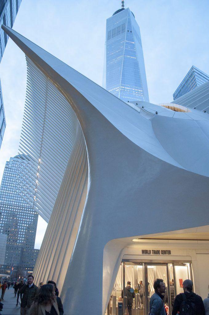Qué ver en Wall Street: Oculus