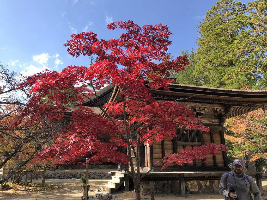 Qué ver en Koyasan: Danjo Garan - mejor época para viajar a Japón