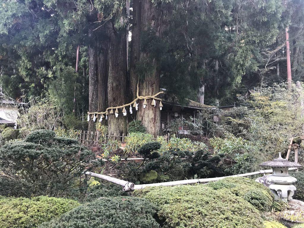 Dormir en un templo budista: Kongo Sanmai-in