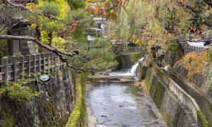 Qué ver en Takayama en un día [GUÍA + ITINERARIO + VÍDEO]