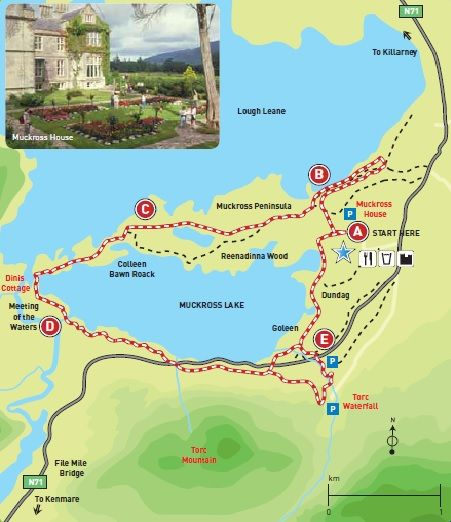 Tercera etapa de nuestra ruta por Irlanda (Ring of Kerry): Muckross Lake Loop Trail