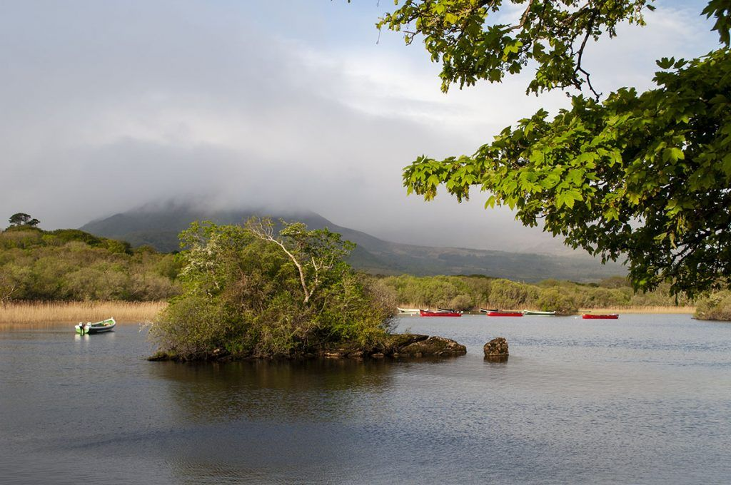 Tercera etapa de nuestra ruta por Irlanda (Ring of Kerry): Muckross Lake