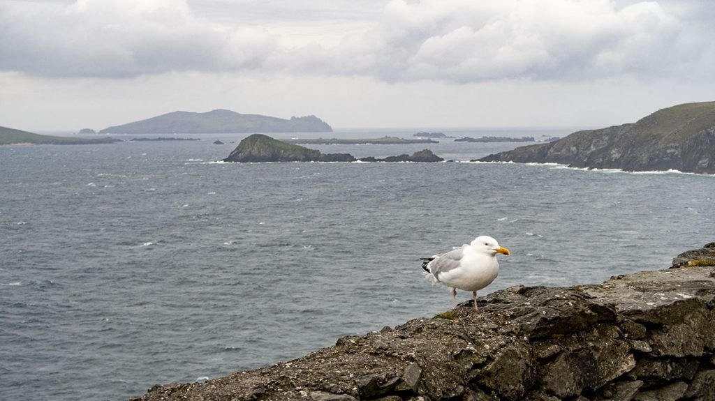 Tercera etapa de nuestra ruta por Irlanda: Península de Dingle
