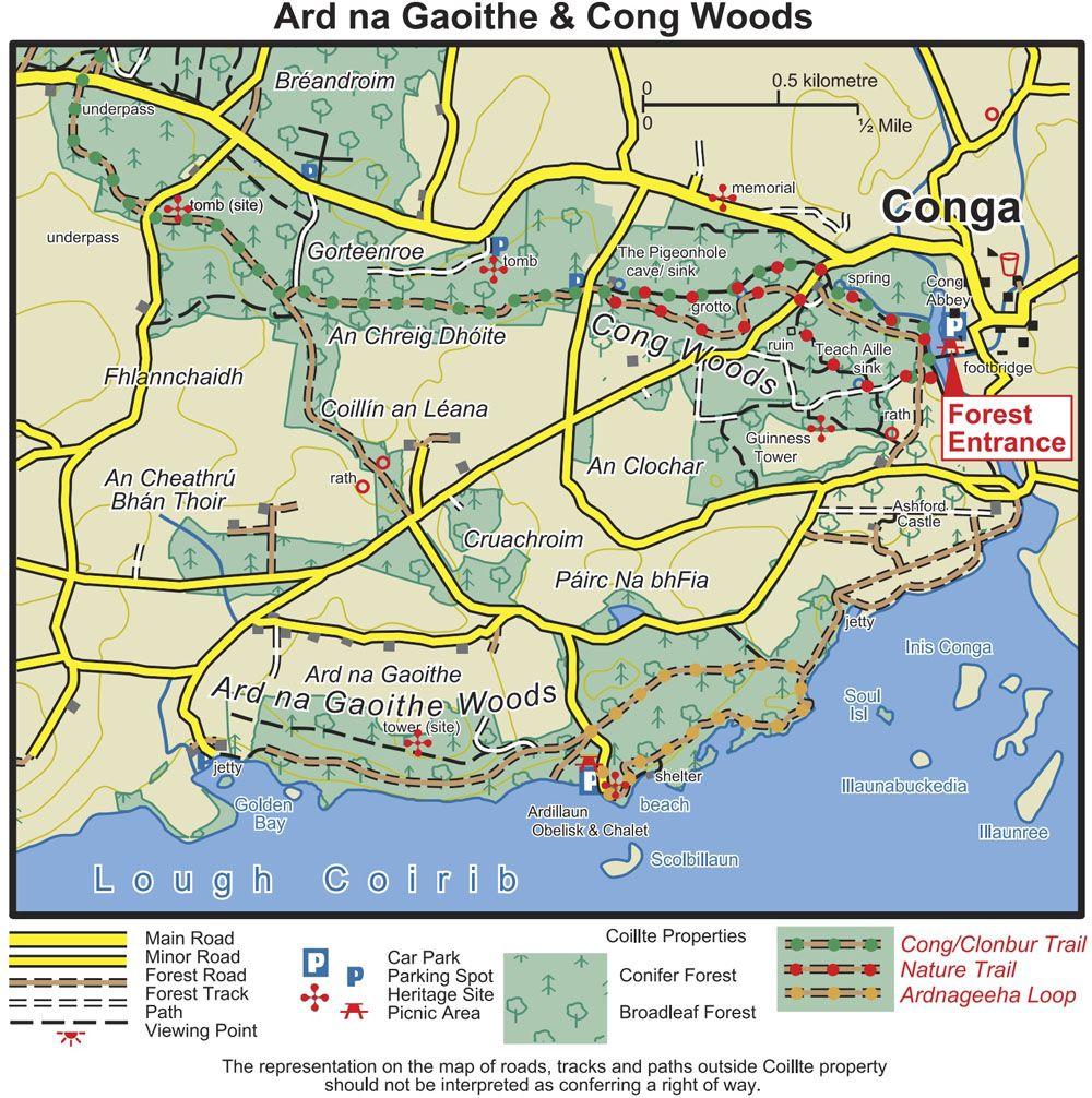 Cuarta etapa de nuestra ruta por Irlanda: rutas por el bosque de Cong
