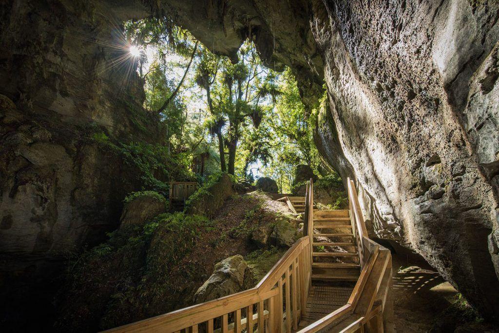 Visitar las Waitomo Caves: TODO lo que tienes que saber