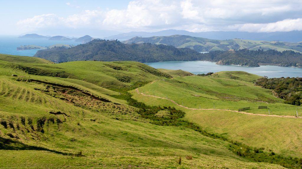 Guía de Nueva Zelanda: Coromandel