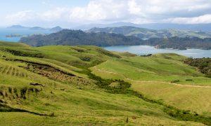 ¿Cuál es la mejor época para viajar a Nueva Zelanda?