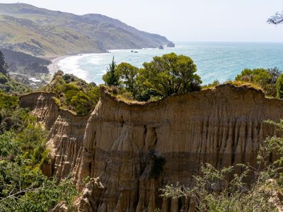 ¿Cuánto cuesta un viaje a Nueva Zelanda? Presupuesto para 21 días