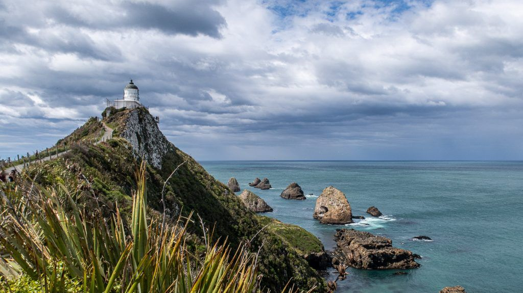 Ruta por Nueva Zelanda: Nugget Point