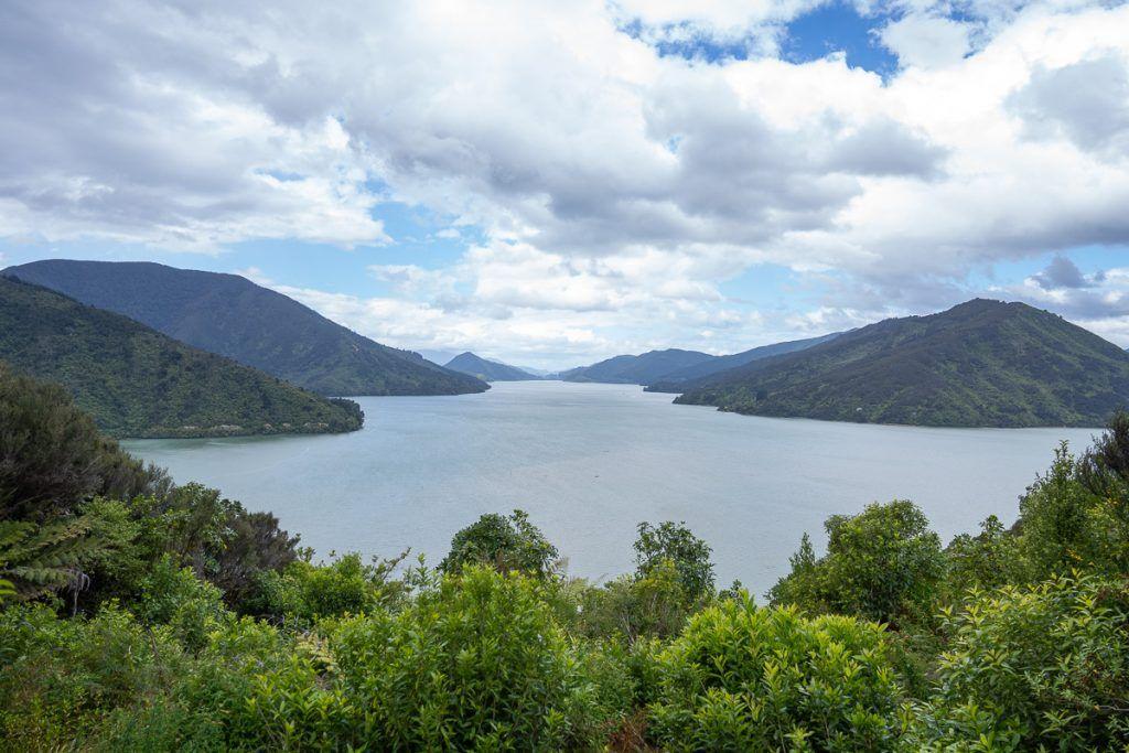 Etapa 4 por NZ entre Wellington y Nelson Lakes: Queen Charlotte Drive