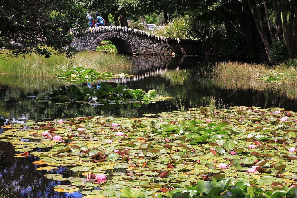 Qué hacer en Queenstown: pasear por los Queenstown Gardens