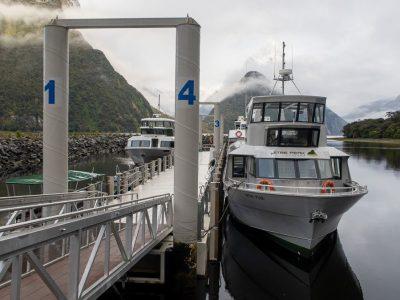 Crucero por Milford Sound: cuál elegir, precios, horarios e información útil