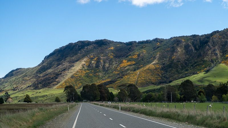 Etapa 10 por NZ desde Milford Sound a Slope Point: Camino a Slope Point