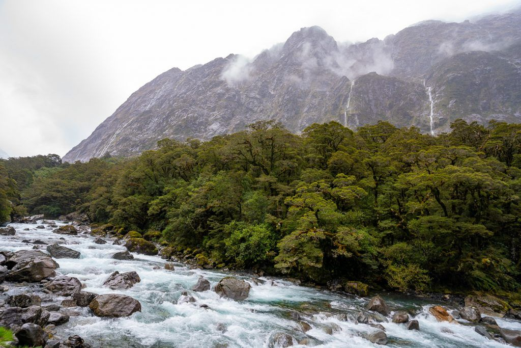 Carretera a Milford Sound: Falls Creek