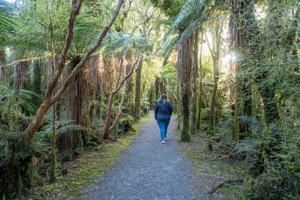 Etapa 7 por NZ desde Haast a Wanaka: Roaring Billy Falls