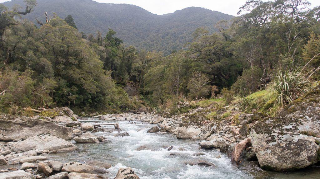Etapa 7 por NZ desde Haast a Wanaka: Waitoto River Safari