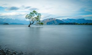 Ruta por NZ | Etapa 7: Haast – Blue Pools – Wanaka  [MAPA + QUÉ VER + VÍDEO]