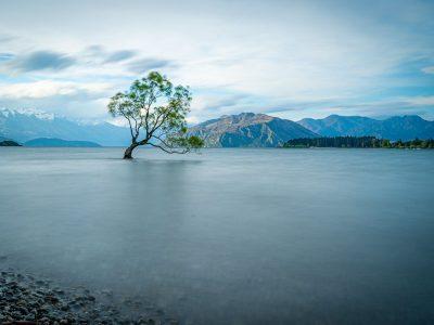 Ruta por NZ | Etapa 7: Haast – Blue Pools – Wanaka  [MAPA + QUÉ VER + VÍDEO]