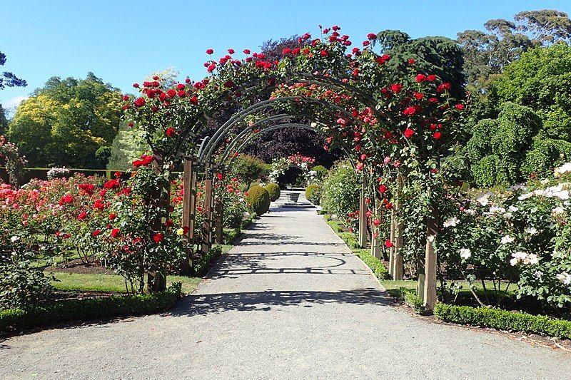 Qué ver en Christchurch: el jardín botánico