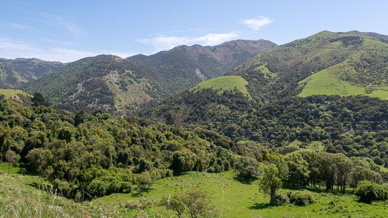 Etapa 14 por NZ de Christchurch a Kaikoura: Tourist Drive por Gore Bay