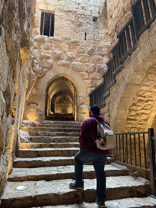 Guía de Jordania: castillo de Ajlun