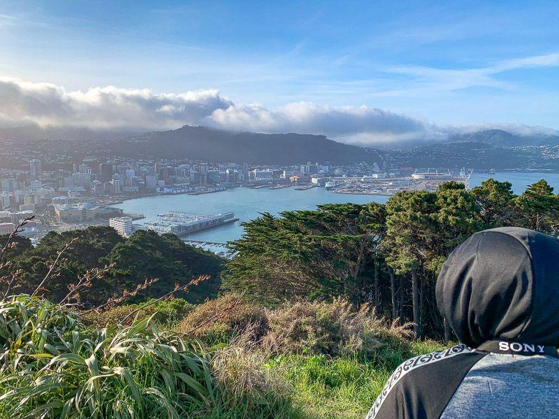 Etapa 15 por NZ de Kaikoura a Wellington: vistas desde el mirador del Monte Victoria