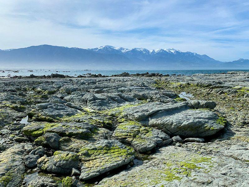 Etapa 14 por NZ de Christchurch a Kaikoura: Point Kean